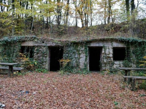 Napuštena kuća - Franjo Kolarić ispod Kamenih svati